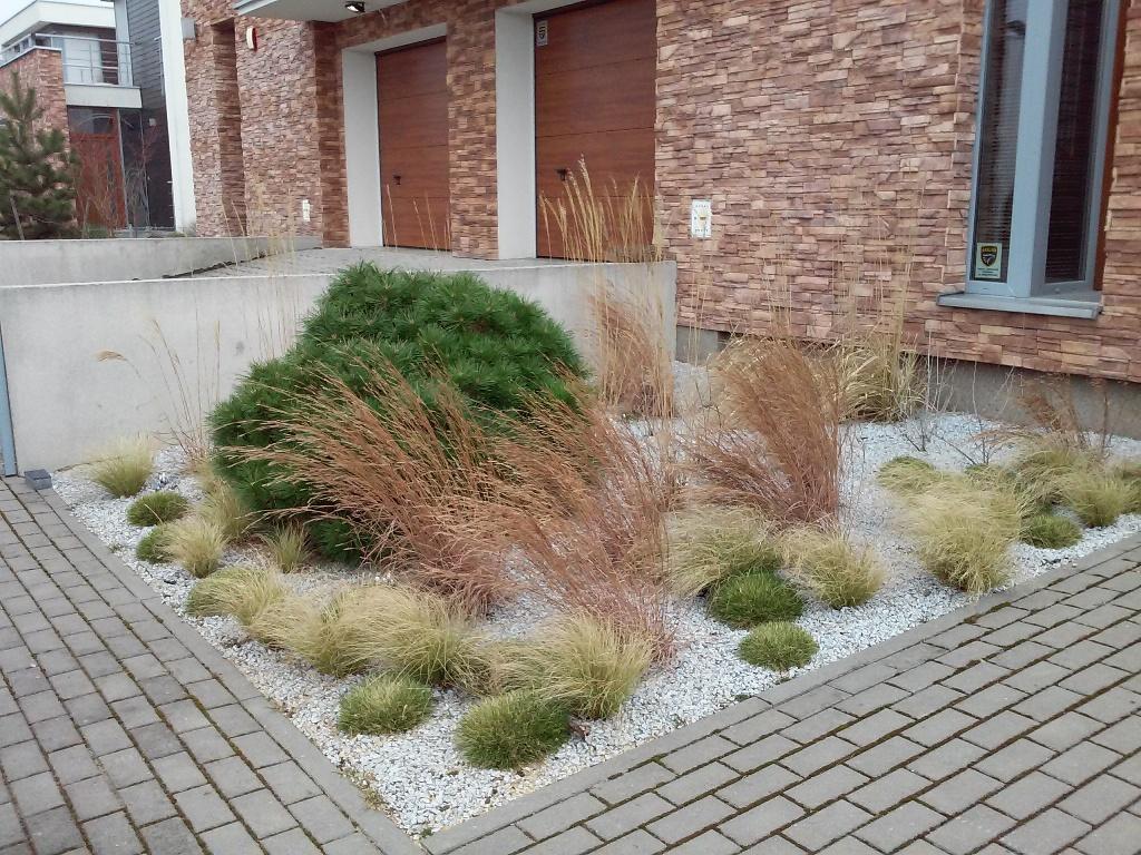 realizacja trawy ozdobne