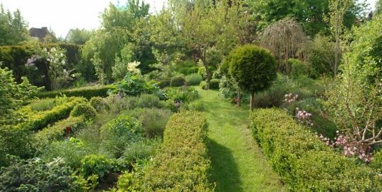 pielęgnacja ogrodów
