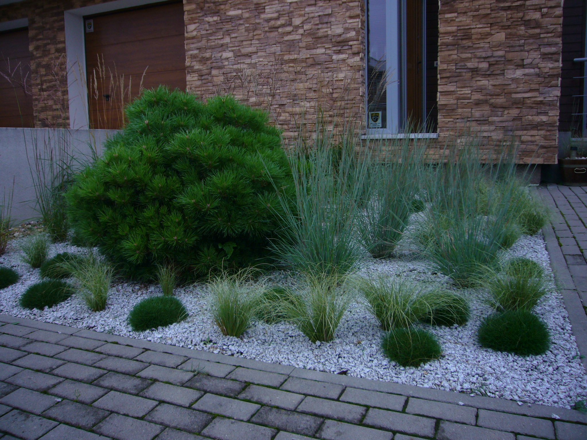 realizacje ogrodów - rabata traw w ogrodzie frontowym