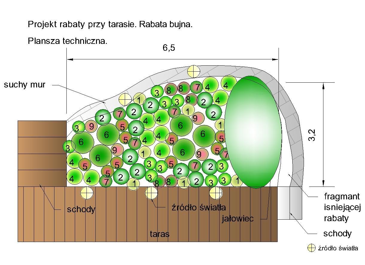 projekt ogrodu rabaty przy tarasie